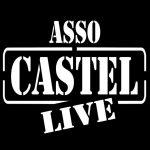 logo castel1