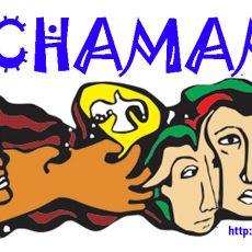 logo_pachamama